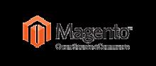 logo - website development