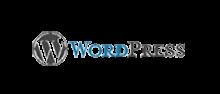 logo | web designing company Kolkata
