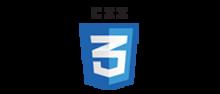 logo - web designing company Kolkata